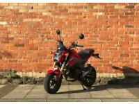 Honda MSX 125 NOT CBF WR MT GROM CBR R125
