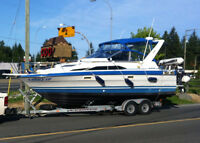 Bayliner Sun Cruiser