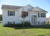 Beautiful Raised Ranch for sale.  Fantastic price!