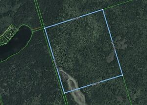 * * * SOLD FIRM  * * * BURNT RIVER / FOUR MILE LAKE AREA ACREAGE