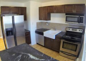 2+1 Bedroom Buy or Rent to Own!
