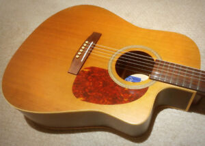Seagull Cedar CW Acoustic Electric -  $365