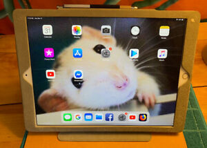 IPad Pro 12.9 screen 64g with case