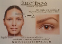 Sleek Brow 3D Training
