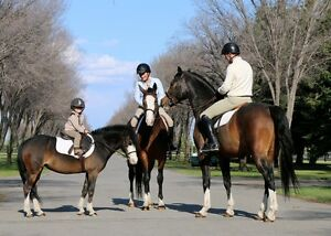 Riding Lessons!
