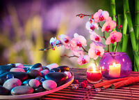 Holistic Therapy Services for Women - Private