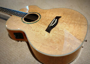 Acoustic Electric guitar - $195