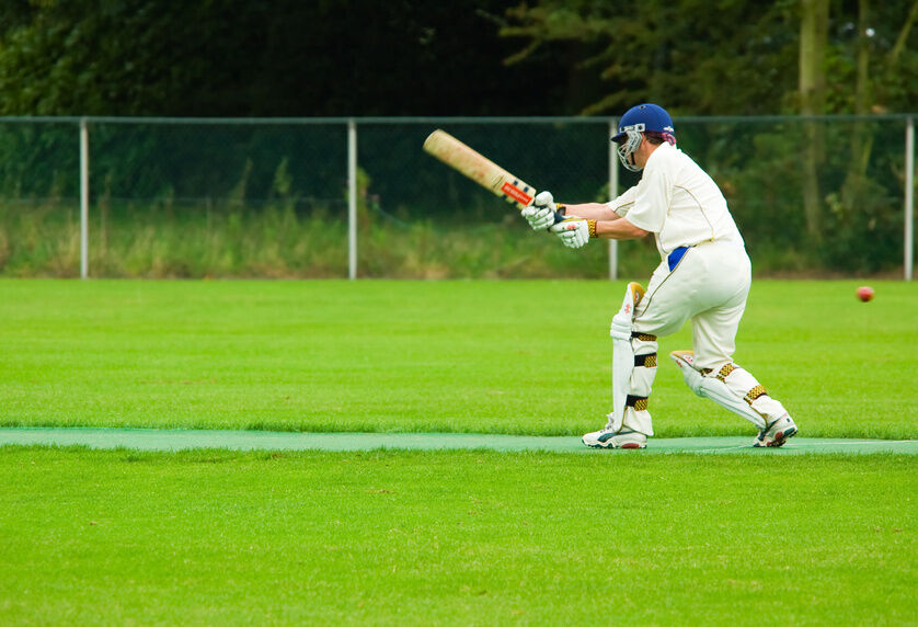 How to Care for Your Woodworm Cricket Bat