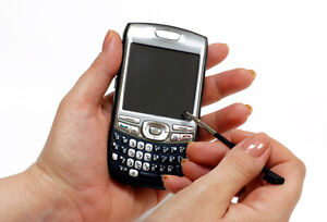 Palm Treo 800w Buying Guide