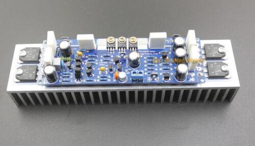 Assembeld LJM L12-2 Mono Power amplifier / Amp board with heatsink  (120W)
