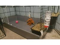 Very large pets cage . Small animals rabbits /guinea pigs
