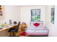Student flat share, 1 or 2 rooms, Hotwells House, start september
