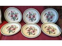 SET OF 6 BRAND NEW PORTMEIRION BOTANIC GARDEN DINNER PLATES