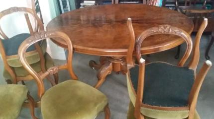 Antique Burr Walnut c.1870's Dining Table + 6 Walnut Chairs