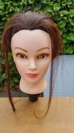 Hairdressers Head