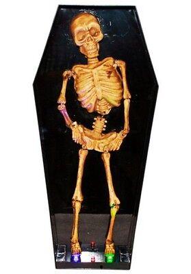Skelett im Sarg ,Bewegung , Soundeffekt , LED, Joka Edition ()