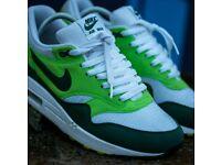 Nike shoes (Rare!)