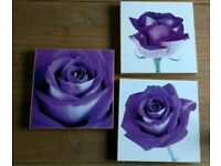 Set of 3 purple flower pictures