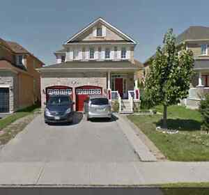brampton walk out basement for rent apartments condos for sale or