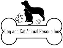 Dog and Cat Animal Rescue (DACAR) Marsden Logan Area Preview