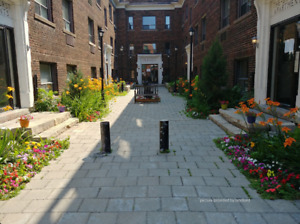 1383 Bathurst - 1 Bedroom - Newly Renovated!!