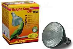 LR Bright Sun UV BIRD 70W UVA UVB Spezial Vogellampe Vogellicht UV Tanken