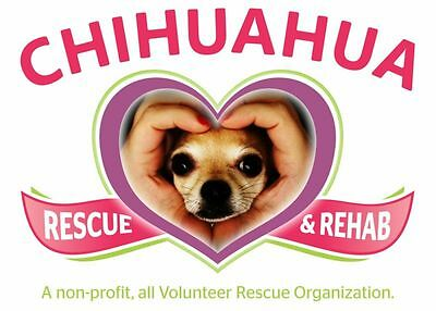 4 Paws Pet Rescue