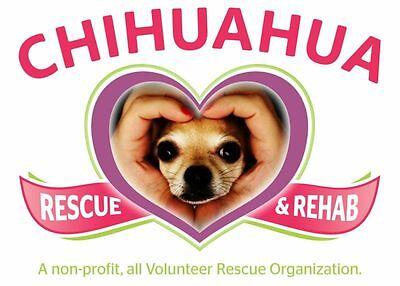 4 Paws Pet Rescue