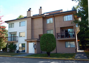 AVAILABLE NOW - LARGE 2 & 3 BEDROOMS (72nd/133rd Sts. Surrey BC)