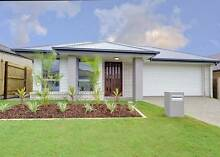 NEW!!! Stop Paying Rent!!! Brisbane City Brisbane North West Preview