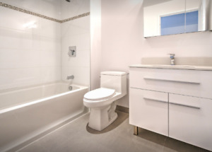 Lease transfer for 1 bedroom apartment downtown Montreal