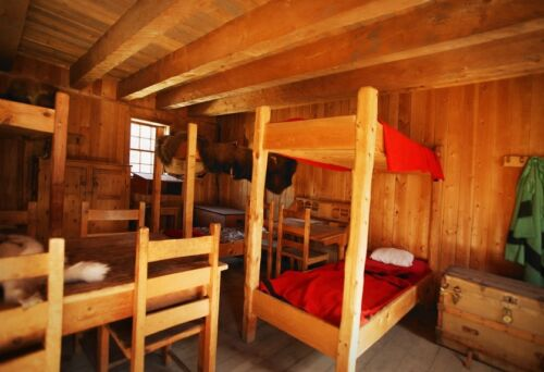 How to Buy a Used Single Bunk Bed