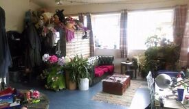 Bright, large double room in friendly North London warehouse available now :)