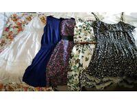 Summer dresses (size 12)
