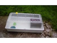 large guinea-pig rabbit cage indoor etc tough plastic easy clean brislington area