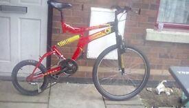 One off endo Mountain bike