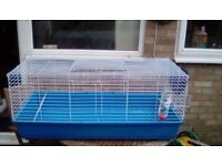 Indoor Guinea Pig Cage. (Also for a small rabbit)