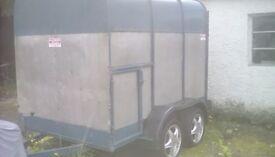 8 x 5 Cattle trailer