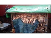 Logs for sale/ Stock up Now @ Summer Prices