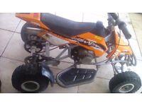 Blata quad 50 cc starts first time 90 pound fast lli quad
