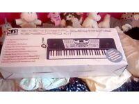 NJS 61 Key Digital Electronic Keyboard Kit