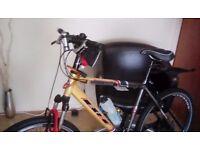 "20"" Man's Mountain bike"