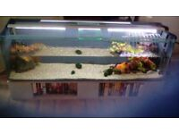 265 ltr aquarium plus extras