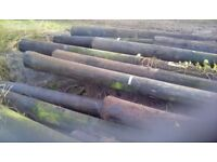 USED ELECTRICAL AND TELEGRAPH POLES