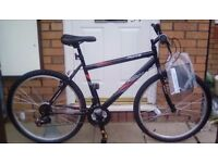 Activ Flyte 18 speed rigid mountain bike for sale Brand New