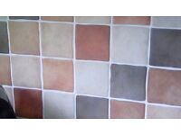 Kitchen wall tiles 148 (10 x 10cm) size various colours, brand new ,excess ordered