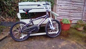 Rhino freestyle bmx bike