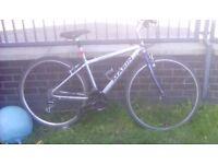 Marin larkspur mountain bike