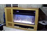 Fish tank - Juwel Rio 240 (Tank only)