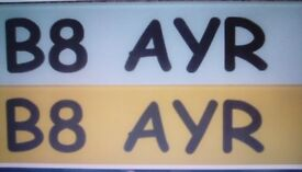 Number plate private registration